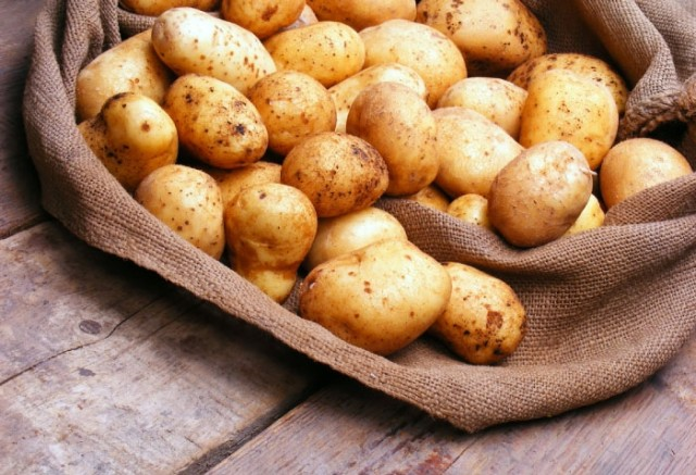 kak-sokhranit-semennoj-kartofel